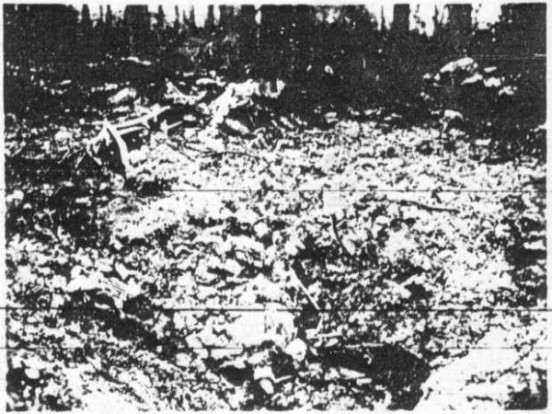 Accident report photograph of the crash site of Republic P-47C Thunderbolt 41-6259