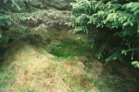 Crash site of UC-78A Bobcat 42-58513 on Craigton Hill seen in 2005