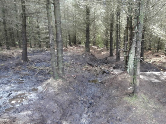 Crash site of UC-78A Bobcat 42-58513 on Craigton Hill after the excavation by the Dumfries and Galloway Aviation Museum
