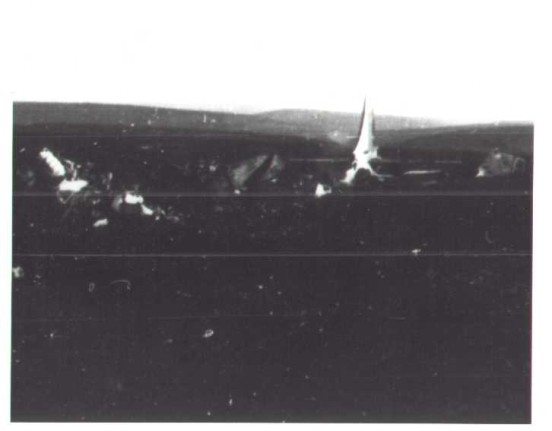 Photograph from the aircraft accident report of Boeing RB-29A 44-61999, Higher Shelf Stones, Bleaklow