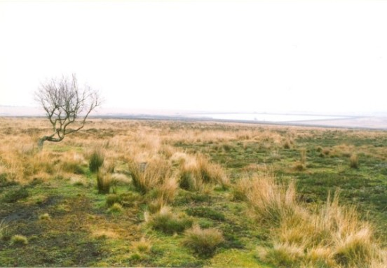 Area of White Edge Moor near Sheffield where Vickers Wellington Z8491 crashed