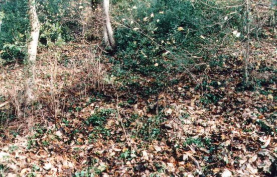 Crash site of Airspeed Oxford BG197 near Matlock, Derbyshire