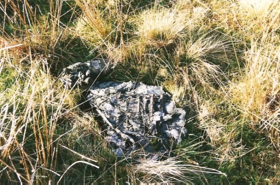 The small pieces of Wreckage at the crash site of Handley Page Hampden L4189 on Black Edge, Buxton