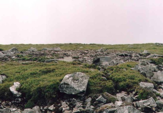 The crash site on Llywdmor of He111 1T+EL,