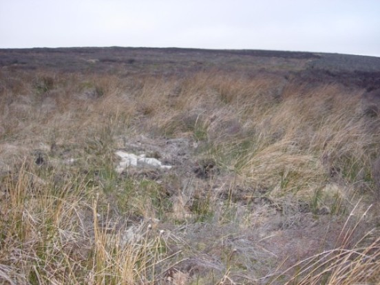 Crash site of Hawker Hart K4931 on Esclushm Mountain, Wrexham