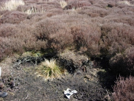 Crash site of Blackburn Skua near High Bentham, Lancashire