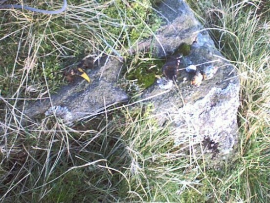 Tiny fragments of wreckage found at the crash site of Airspeed Oxford L4601 on Shutlingsloe, Wildboarclough, Cheshire