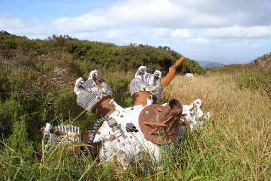 Armstrong Siddeley Cheetha engine from Avro Anson Mk.I MG827 on Criffel, New Abbey, Dumfries & Galloway
