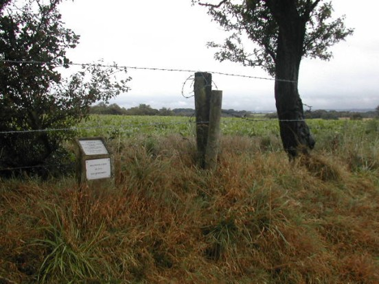 Crash site of Vickers Wellington Mk.IC R1538 on farmland near Dilhorne, Staffordshire