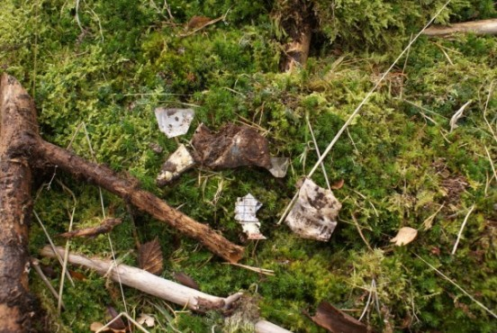 Small fragments of wreckage at the crash site from Jet Provost T. Mk.5 XW417 near Thirlmere