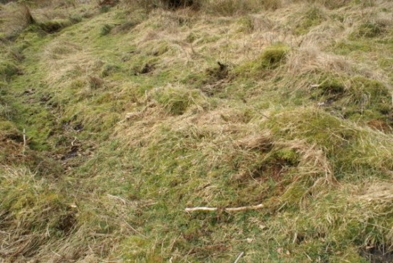 Vehicle tracks in which the first fragments of Jet Provost XW417 were found