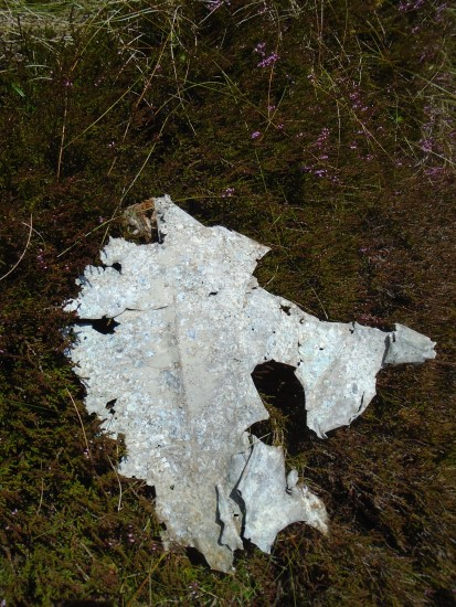 Crash site of Bristol Blenheim Mk.IV Z7646 on Bowbeat Hill, Moorfoot Hills, Peebles, Scottish Border