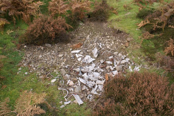 Wreckage at the crash site of Typhoon DN366 in the Lammermuir Hills