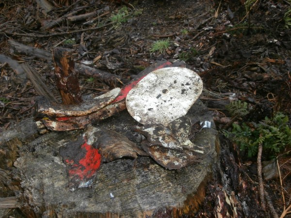 Crash site of Jet Provost T. Mk.5 XW426 in Dalby Forest, Pickering