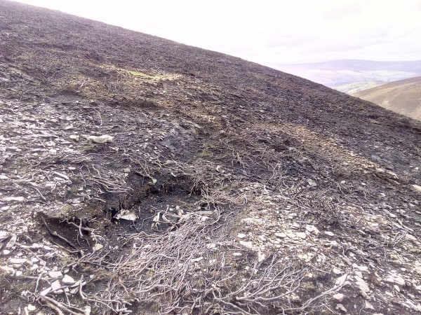 Crash site of Airspeed Oxford Mk.II X7064 on Moel y Gamelin, Llangollen, Denbighshire