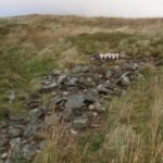 Crash site of Avro Anson Mk.I N4981 on Moel Elilio, Betws Garmon, Caernarfon