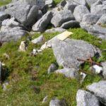 Wreckage at the crash site of Avro Anson EG485 on Cairnsmore of Fleet, Newton Stewart