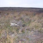 Crash site of Hawker Hart K4931 on Esclushm Mountain, Wrexham