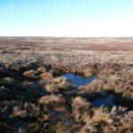 Crash site of Spitfire P8563