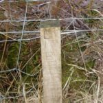 Wooden marker placed close to the crash site of Consolidated Liberator AM915 on Arinarach Hill near Campbeltown